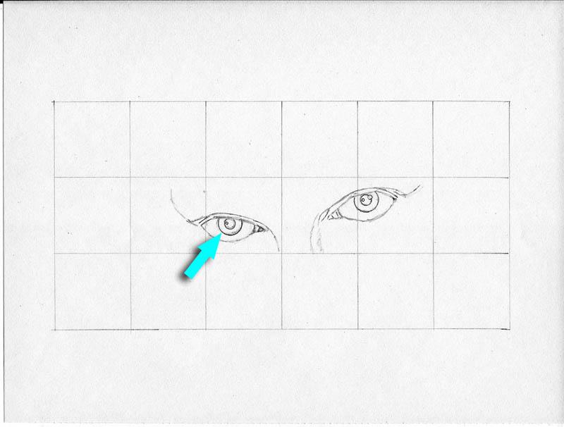 04p bride eyes irises and pupils