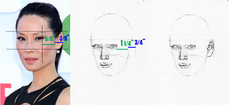 drawing lucy liu ear placement