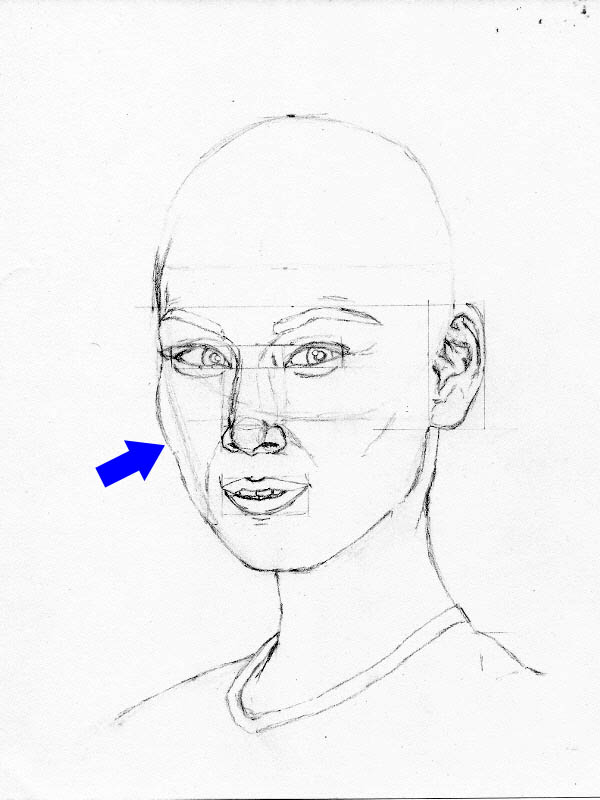 drawing lucy liu face outline