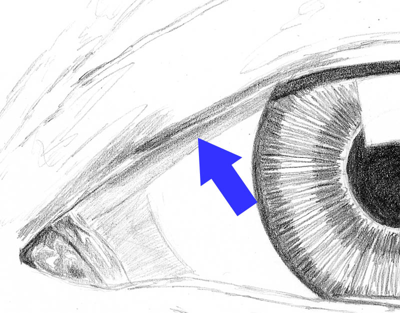 how to draw an eye 0212 eyelid plane start