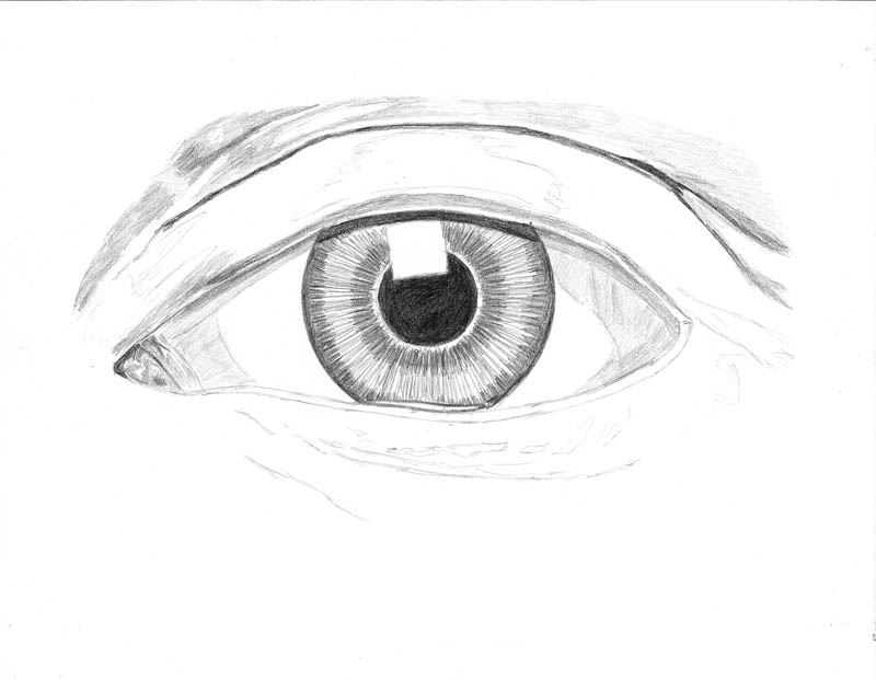 how to draw an eye 0214 above upper eyelid