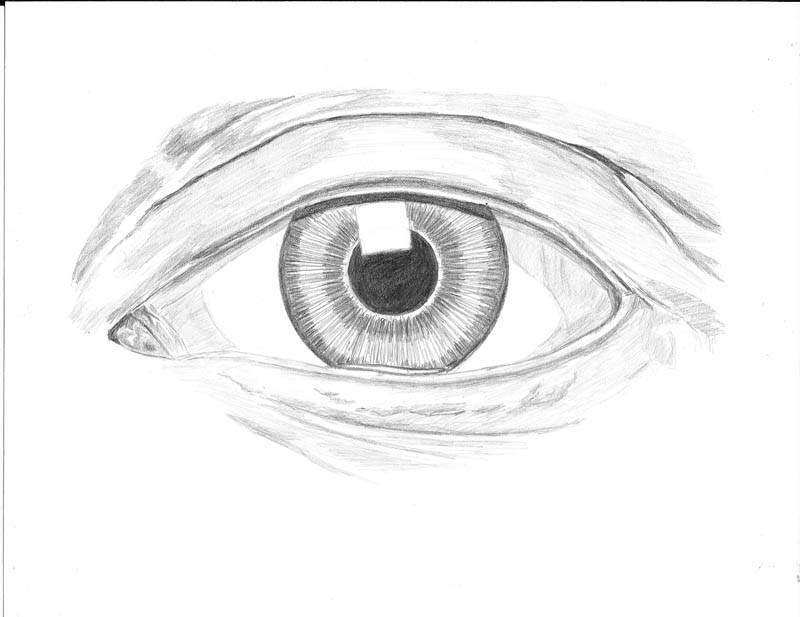 how to draw an eye 0216 lower eyelid