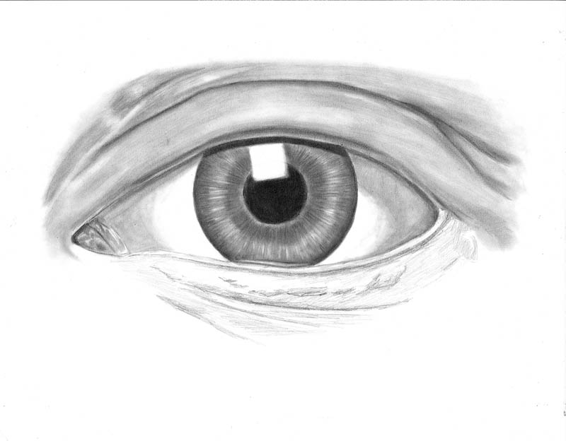 how to draw an eye 0306 upper eyelid