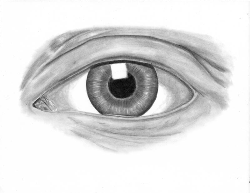 how to draw an eye 0307 lower eyelid