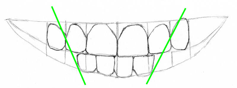 09 how to draw teeth bottom lateral incisors