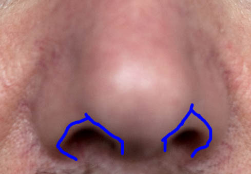 07 how to draw a face photo nostrils