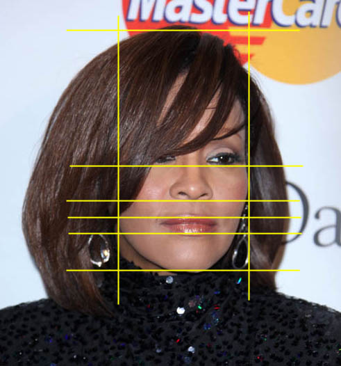 see how to draw whitney houston gridlines closeup