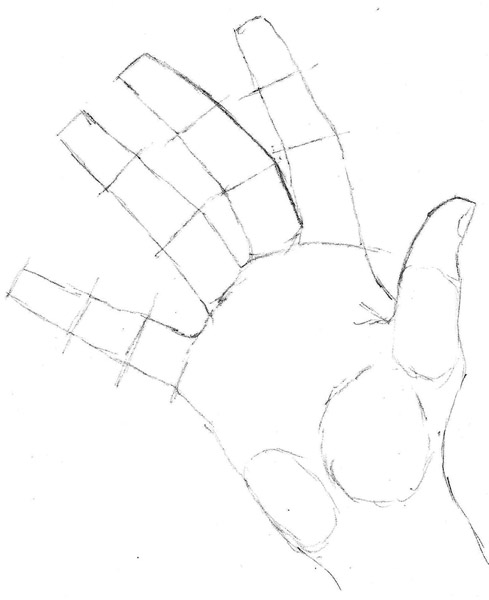 01 how to draw hands shapes