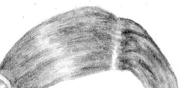 drawing materials example 10