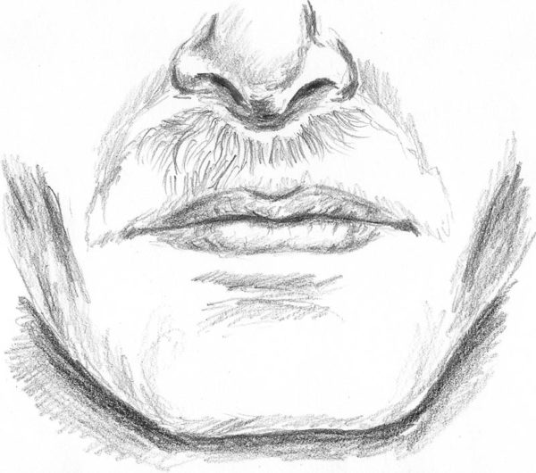 How To Draw A Mustache That Is Up Close And Realistic Let S Draw
